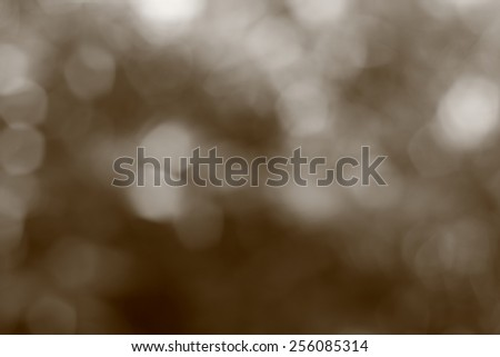 Abstract background nature,Blur Out of focus on tree leaves:monochrome sepia - stock photo