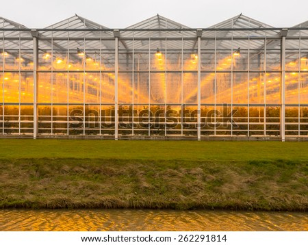 Abstract background of a commercial glasshouse - stock photo