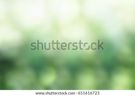 Abstract background of blurred green bokeh texture.