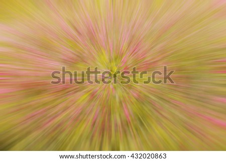 Abstract background of color flowers, Background blurred from process.