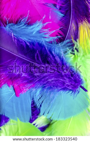 Abstract background of colorful feathers - stock photo