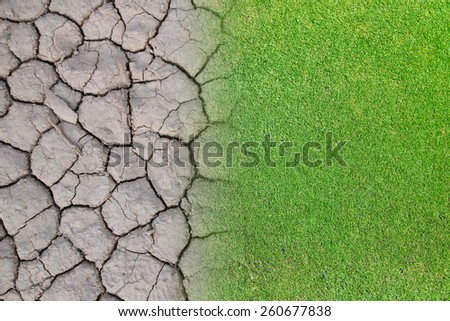 abstract background of dry soil  with green grass - stock photo