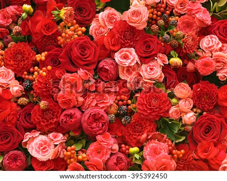Abstract background of flowers - stock photo