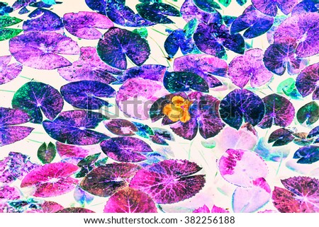 Abstract background of flowers and tree in black-light Style, purple-blue tone - stock photo
