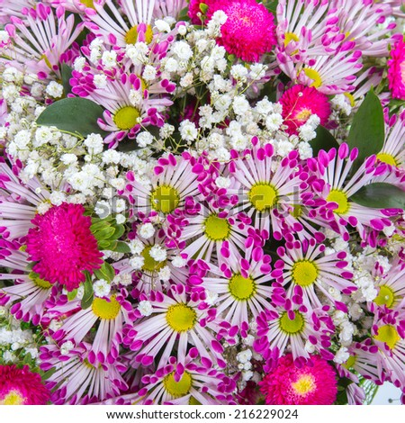 Abstract background of flowers. Close-up. - stock photo