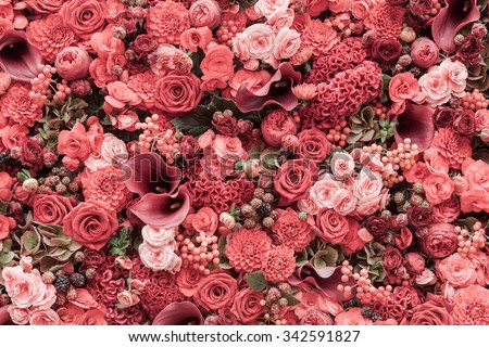 Abstract background of flowers Close-up.