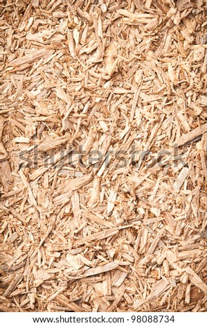 abstract background of wood texture - stock photo