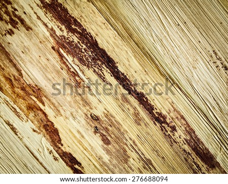 abstract background or texture extruded corn husk - stock photo