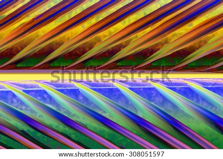 Abstract background, Patterns of coconut leaves.