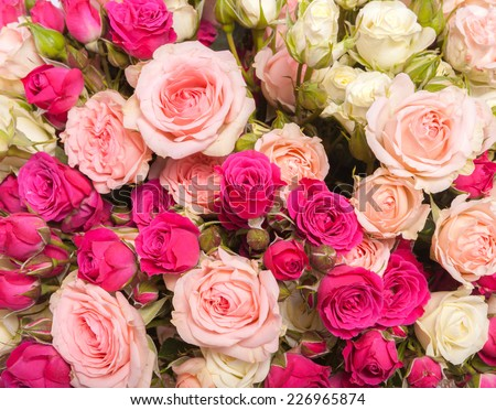 Abstract background texture of flowers. Close-up. - stock photo