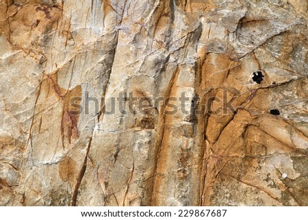 abstract background texture of seashore rock