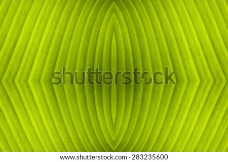 Abstract background with a pattern lines - stock photo