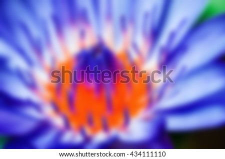 abstract backgrounds Lotus flower  blurred