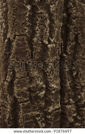 abstract bark texture image - stock photo