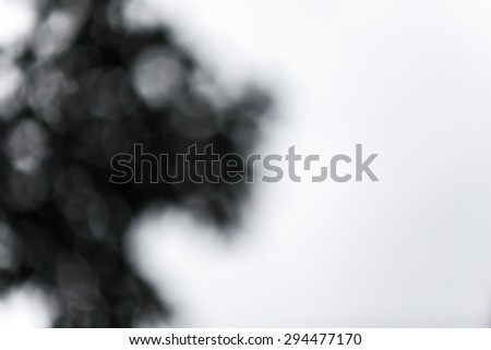 Abstract black and white bokeh. Abstract shadow bokeh background.