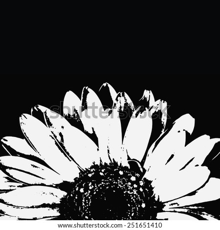 Abstract black and white gerbera flower. - stock photo