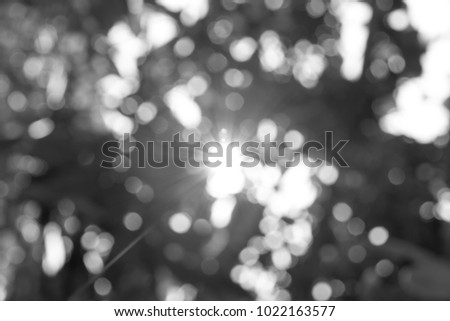 abstract black and white light bokeh background for backdrop concept