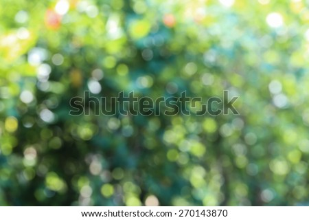 Abstract blur bokeh background. - stock photo