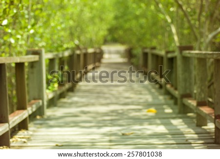 Abstract Blur Bokeh Bridge green tree and worming tone filter texture background - stock photo