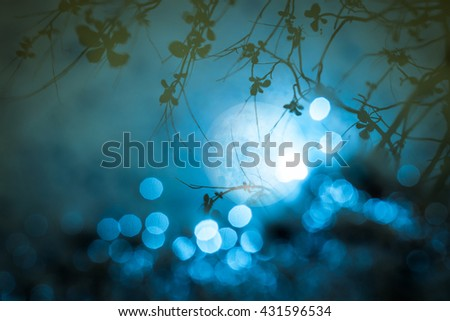 Abstract blur full moon and tree reflect on the water surface. Elements of this image furnished by NASA
