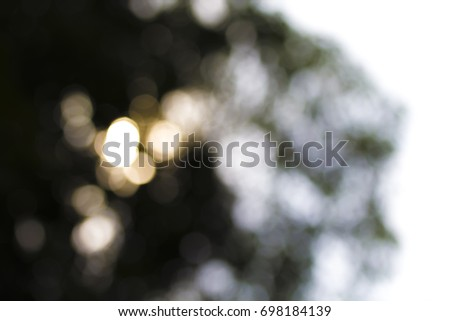 Abstract blur of nature with the bokeh of light through the trees and sky as a background image.