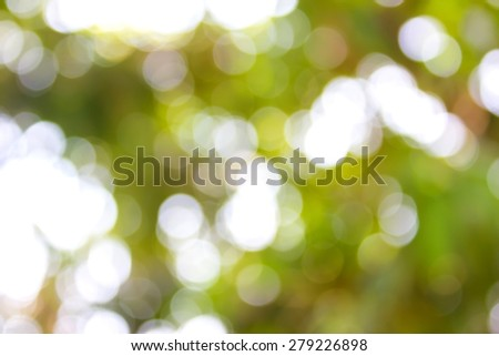 Abstract blur with bokhe of light through the trees Mood of loneliness has relied avoid intense light the tree. To help relieve the sadness, loneliness. - stock photo