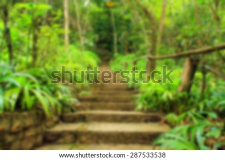 Abstract blurred background, Stairway in forest. - stock photo