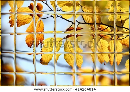 Abstract blurred defocused bokeh background of colorful autumn leaves in forest through window panes - stock photo