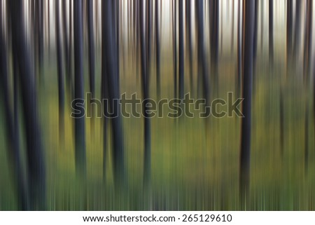 Abstract blurred forest - stock photo