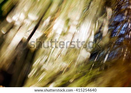 Abstract blurred image of conifer branch; blurred 100% - stock photo