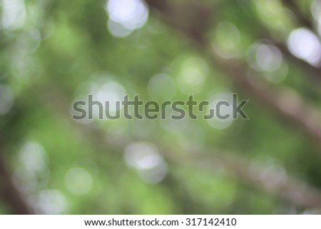 abstract blurred nature backgrounds with bokeh circle light :blurred of leaves and branch of trees at park outdoor.out of focused concept.green nature concept.environment day and ecology concept. - stock photo
