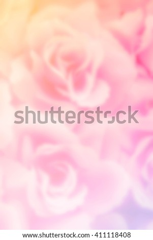 abstract blurred photo of fabric rose background