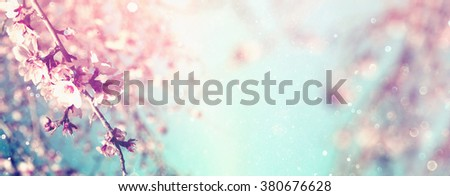 Abstract blurred website banner background of of spring white cherry blossoms tree. selective focus. vintage filtered with glitter overlay - stock photo
