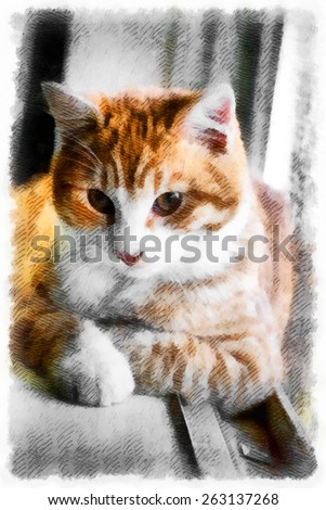Abstract bright watercolor background,brown eyed cat,painting texture illustration