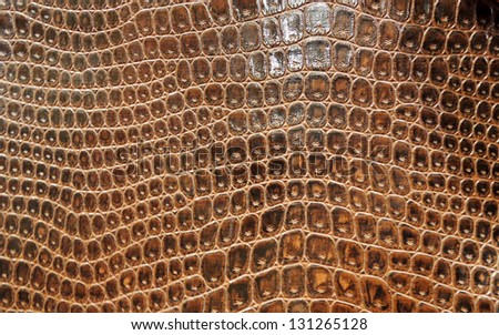 Abstract brown snake skin - stock photo