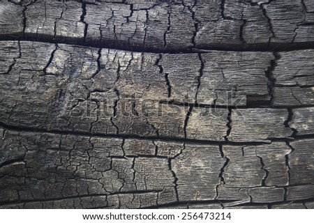 Abstract burn wood background - stock photo