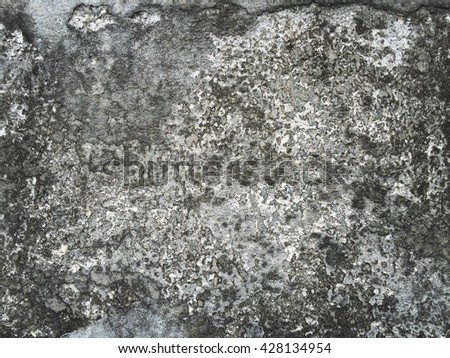 Abstract Cement wall texture background.