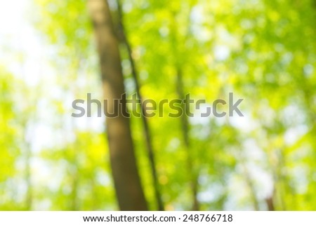 Abstract circular green bokeh background. - stock photo
