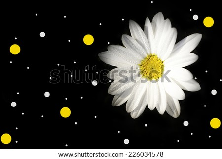 Abstract dark background with flower and spot bokeh color. - stock photo