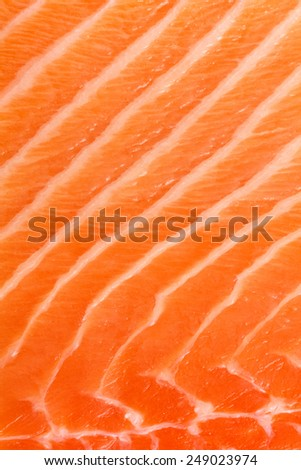Abstract detail of raw salmon.