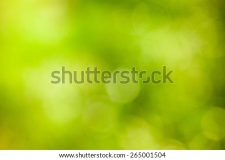 Abstract eco green blurred background. green bokeh background. Element of design. - stock photo