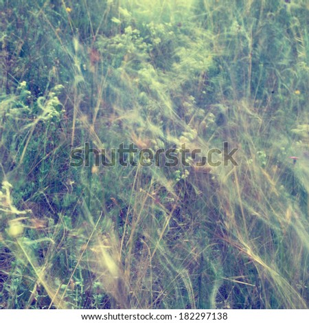 Abstract floral background in vintage style. Wild flowers and grass mowing at windy summer field. Watercolor effect - stock photo