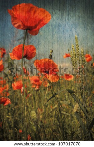 Abstract floral nature background on old texture - stock photo