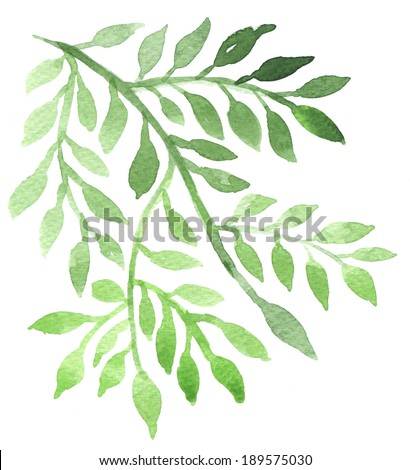 Abstract foliate watercolor painting - stock photo