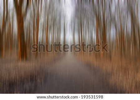 abstract forest road  in motion blur - stock photo