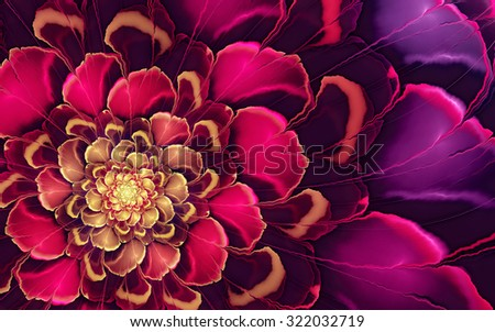 Abstract fractal pinkpurple flower yellow highlights stock abstract fractal pink purple flower with yellow highlights usable for tablet background altavistaventures Choice Image