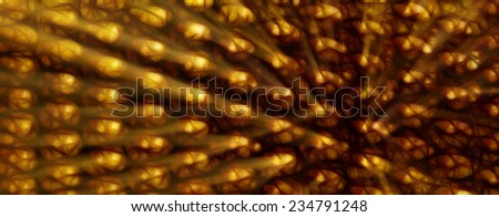 abstract, fractals, texture, background