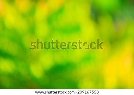Abstract glowing light on a green background  - stock photo