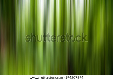 abstract green  forest  - stock photo