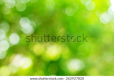 abstract green natural background - stock photo